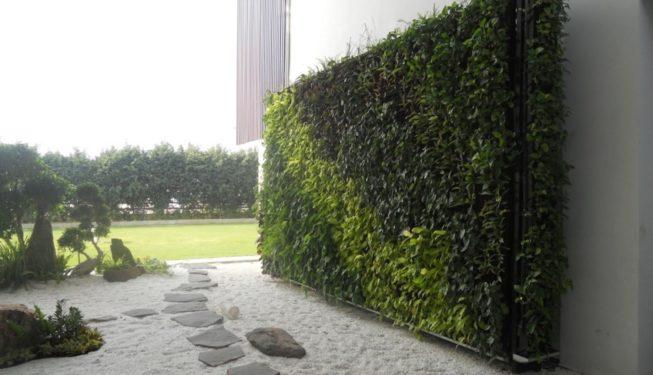 tregreen_living wall 3